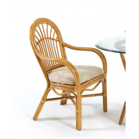 Antigua  Rattan Dining Arm Chair (Mini 2)$299 Each