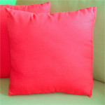 Sunbrella 15 Indoor/Outdoor Throw Pillow -